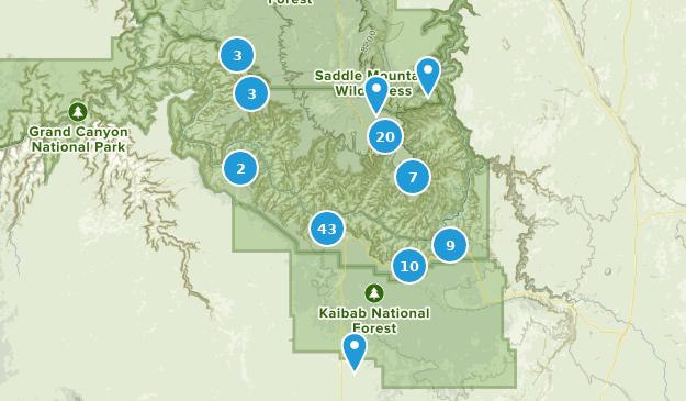 Best Trails near Grand Canyon, Arizona | AllTrails