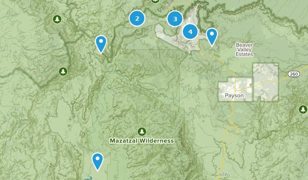 Pine, Arizona Map