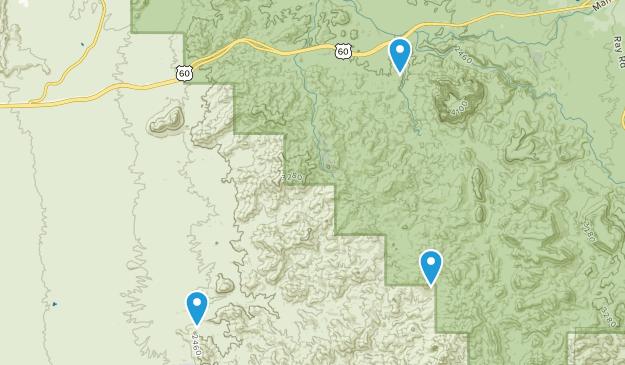 Reymert, Arizona Map