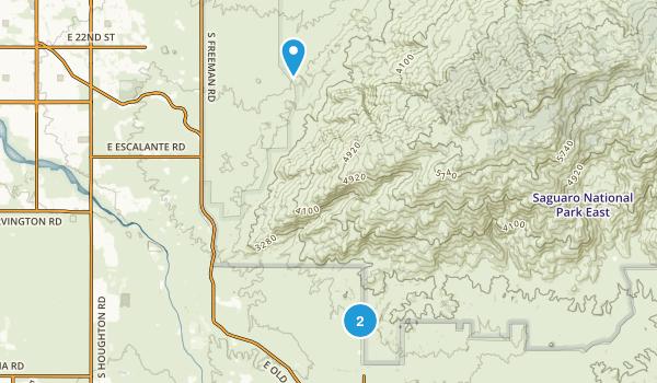 Rincon Valley, Arizona Map