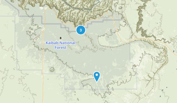 Tusayan, Arizona Map