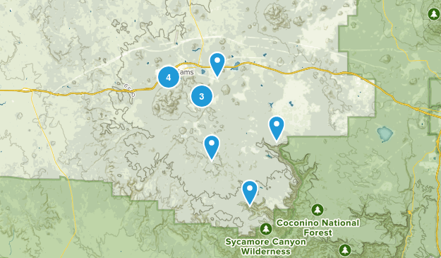 Williams, Arizona Map