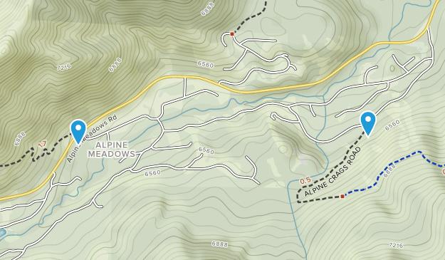 Alpine Medows, California Map