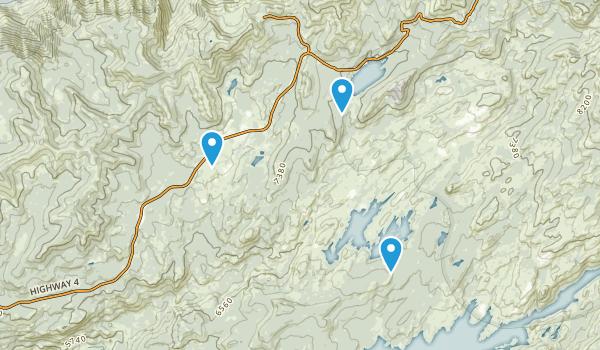 Bear Valley, California Map