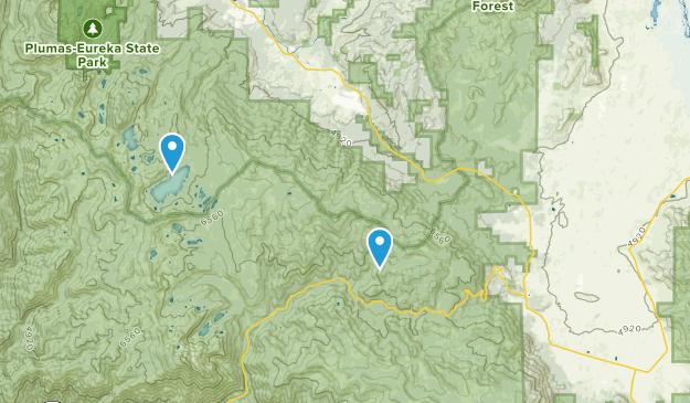 Calpine, California Map