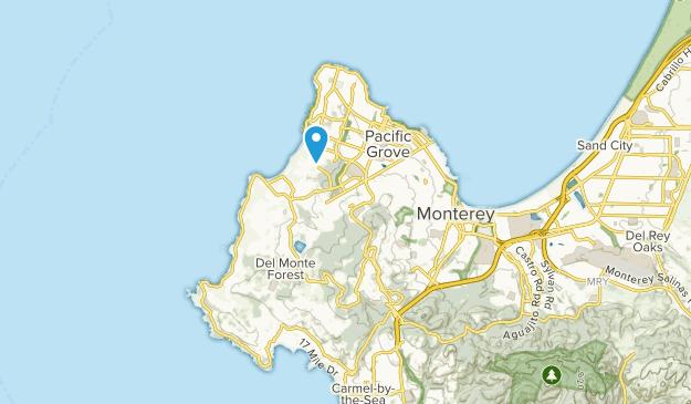 Del Monte Forest, California Map
