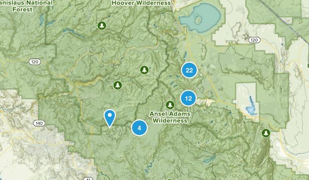 June Lake, California Map