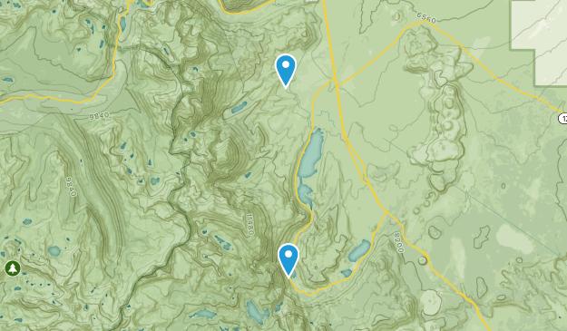 June Lake Junction, California Map