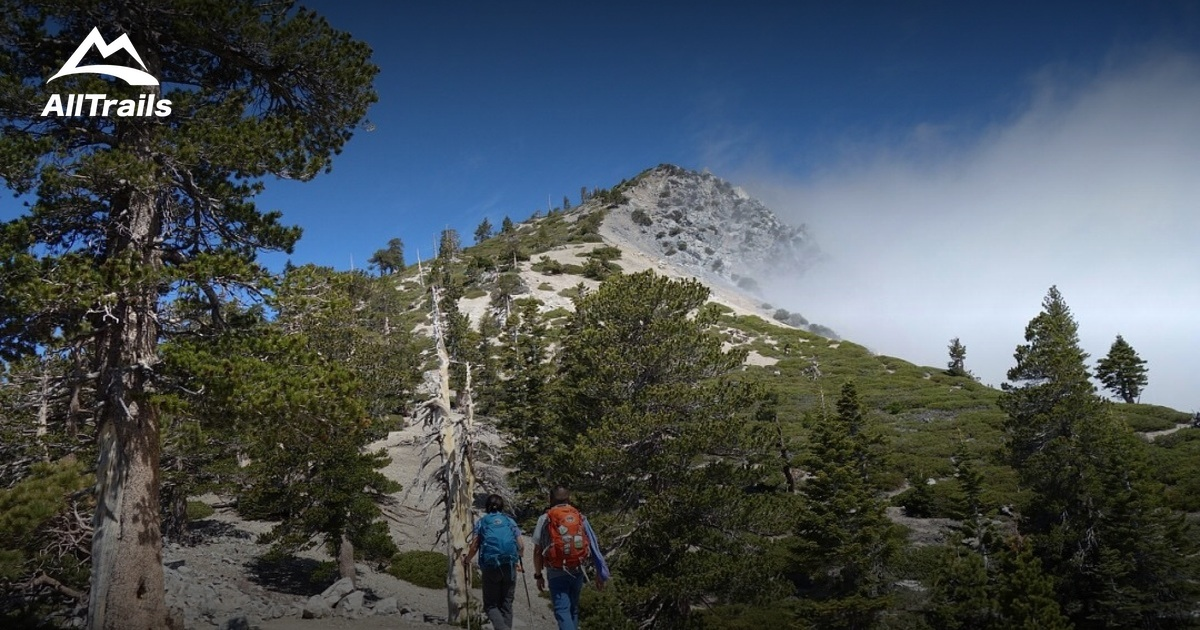 Best Trails Near Mt Baldy California Alltrails Com