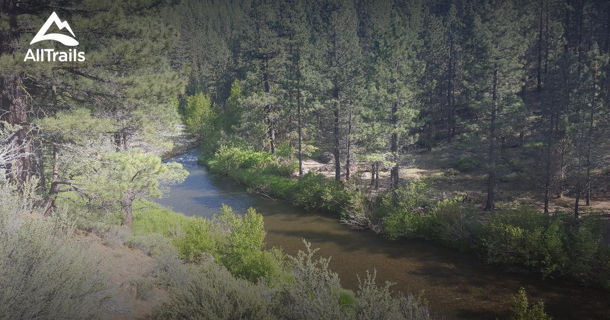 Best Trails Near Susanville California Alltrails