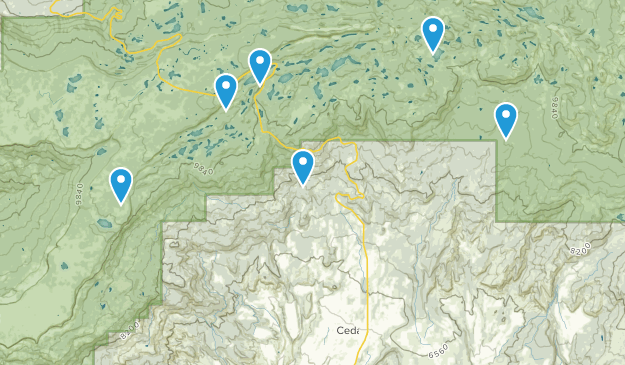 Cedaredge, Colorado Map