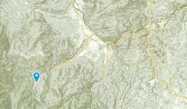 Cotopaxi, Colorado Map