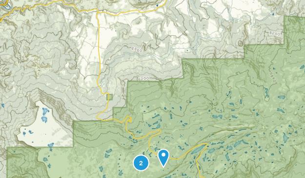 Molina, Colorado Map
