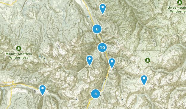 Ouray, Colorado Map