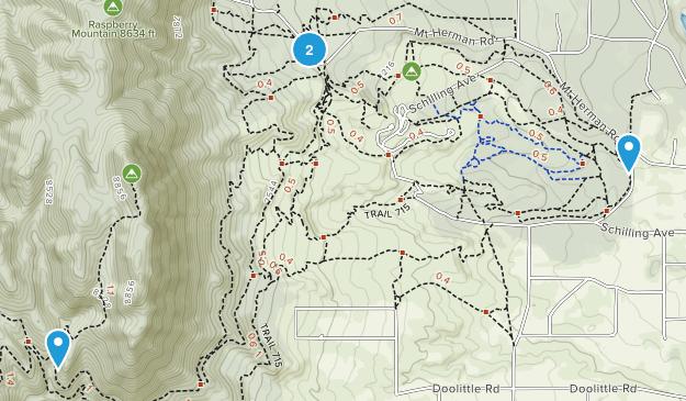 Pine Crest, Colorado Map