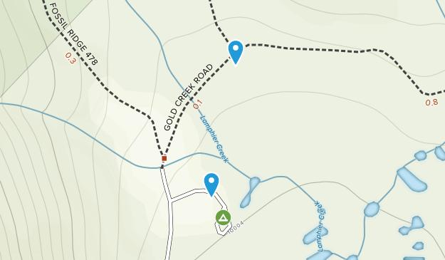 Pitkin, Colorado Map
