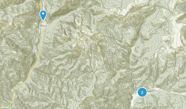 Rico, Colorado Map