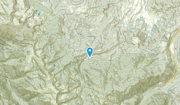 Wingo, Colorado Map