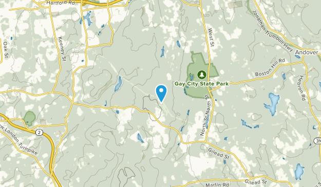 Buckingham, Connecticut Map