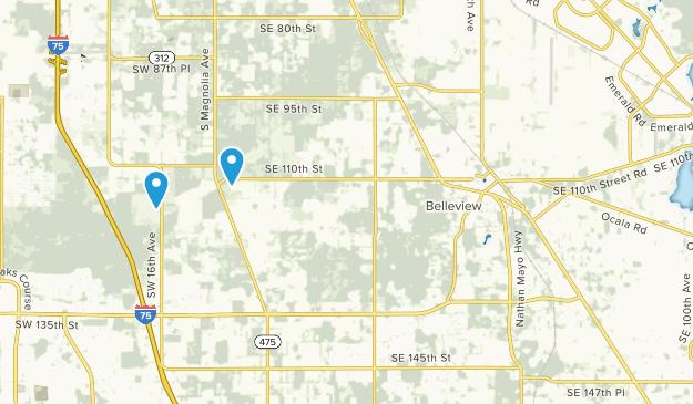 Belleview, Florida Map