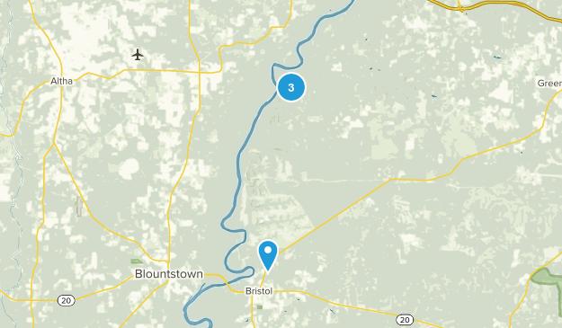 Bristol, Florida Map