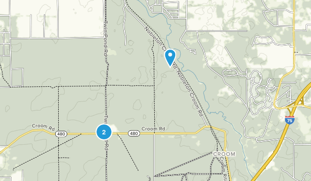 Bushnell, Florida Map