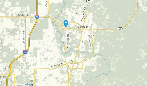 Lacoochee, Florida Map