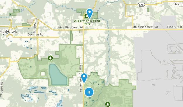 Lithia, Florida Map