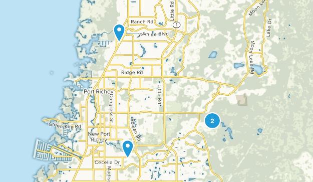 New Port Richey, Florida Map