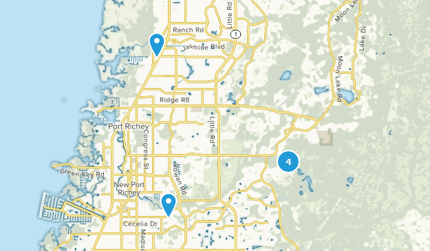 Where Is New Port Richey Florida On Florida Map.Best Trails Near New Port Richey Florida Alltrails