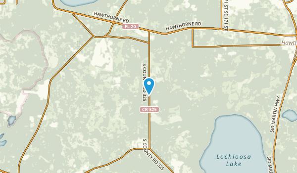 Phifer, Florida Map
