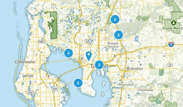 Tampa, Florida Map