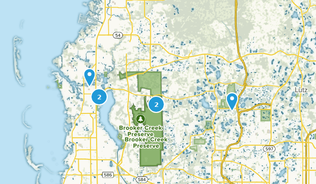 Springs In Florida Map.Best Trails Near Tarpon Springs Florida Alltrails