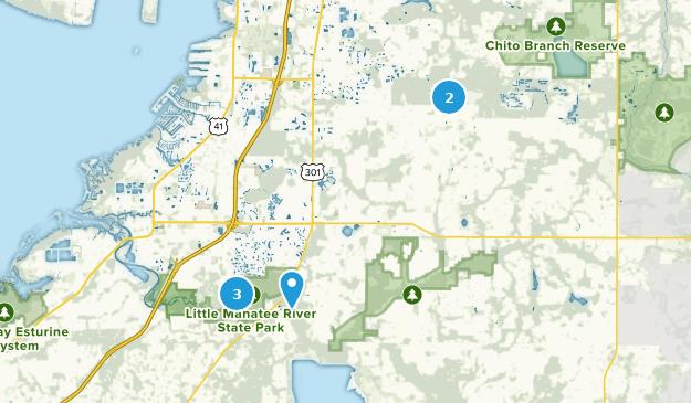 Wimauma, Florida Map