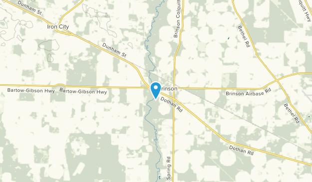 Brinson, Georgia Map