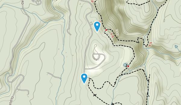 Plum Nelly, Georgia Map