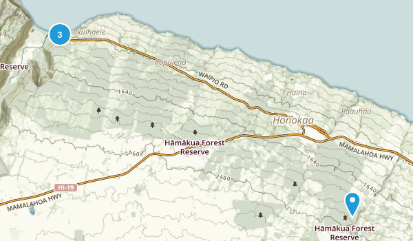 Honokaa, Hawaii Map