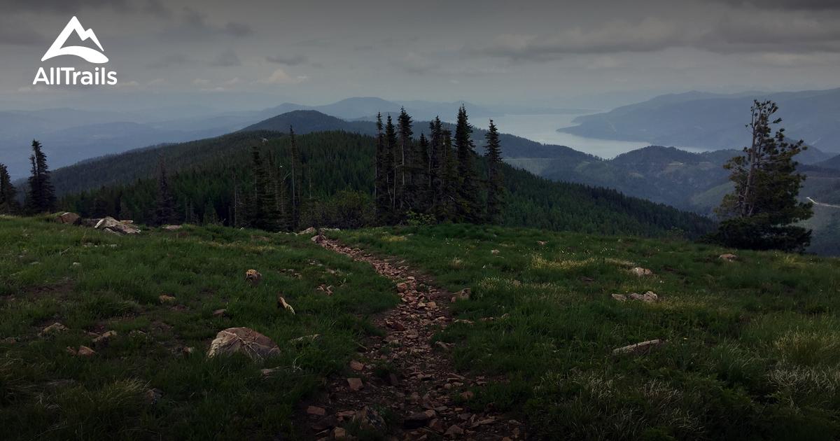 Best Trails Near Athol Idaho Alltrails