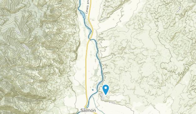 Carmen, Idaho Map