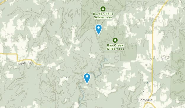 Watkins Ford, Illinois Map