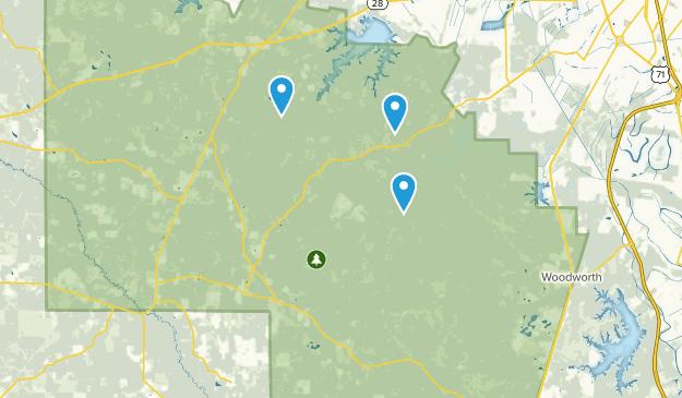 Elmer, Louisiana Map