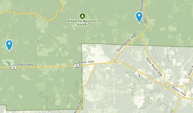 Pitkin, Louisiana Map