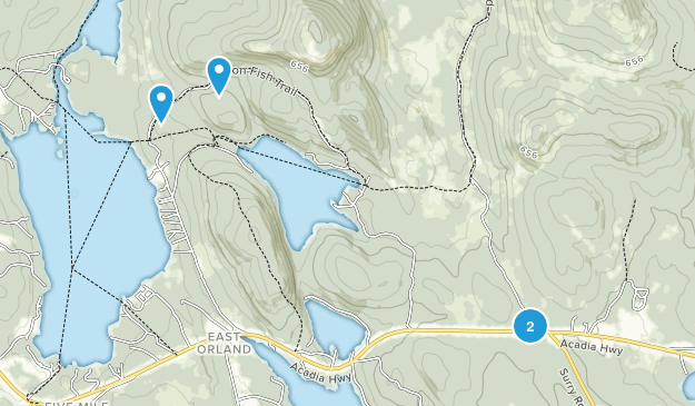 Orland, Maine Map