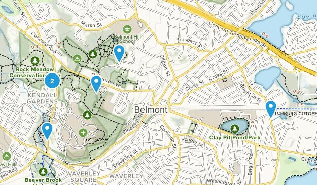 Belmont, Massachusetts Map