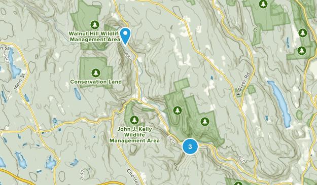 Chester, Massachusetts Map
