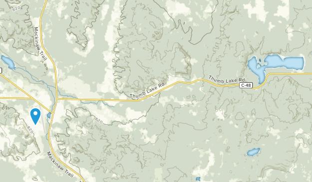 Boyne Falls, Michigan Map