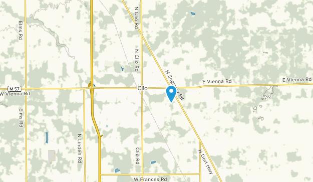 Clio, Michigan Map