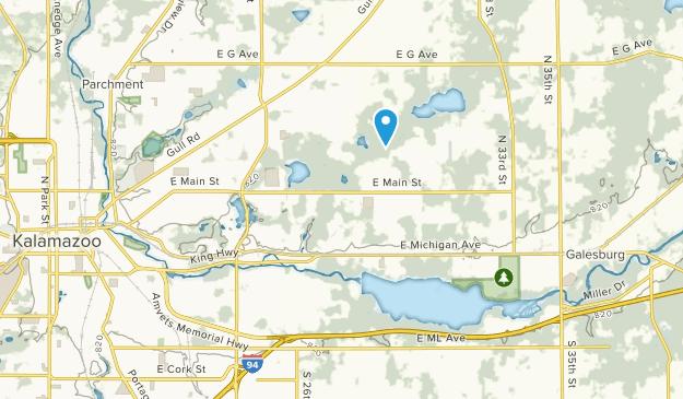 Comstock, Michigan Map