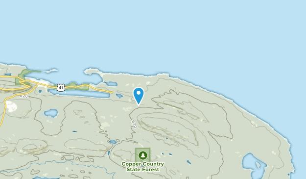 Grant Twp, Michigan Map