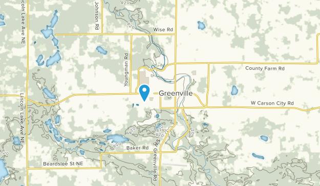 Greenville, Michigan Map